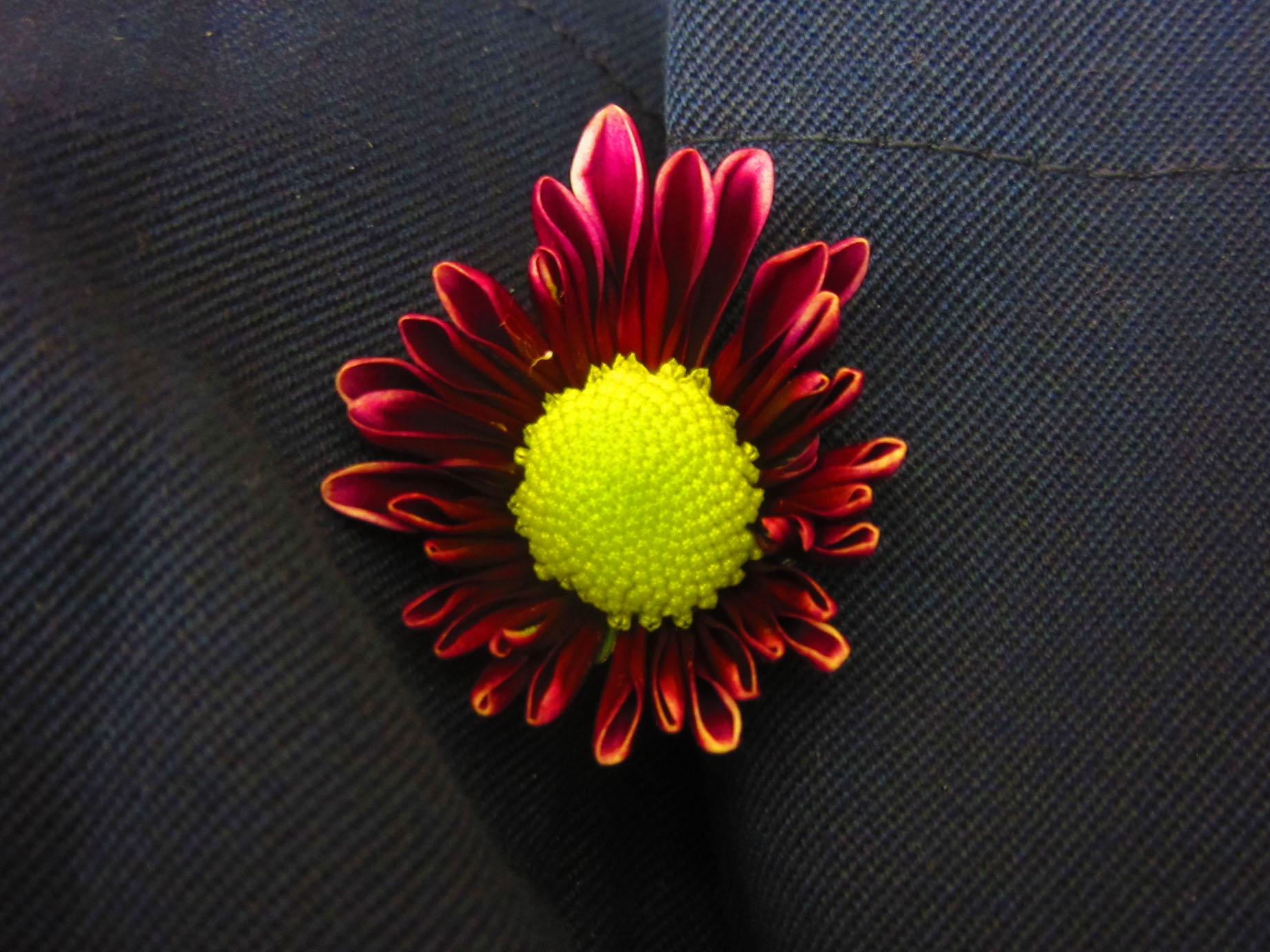 _flowers_stp_20141125_5324