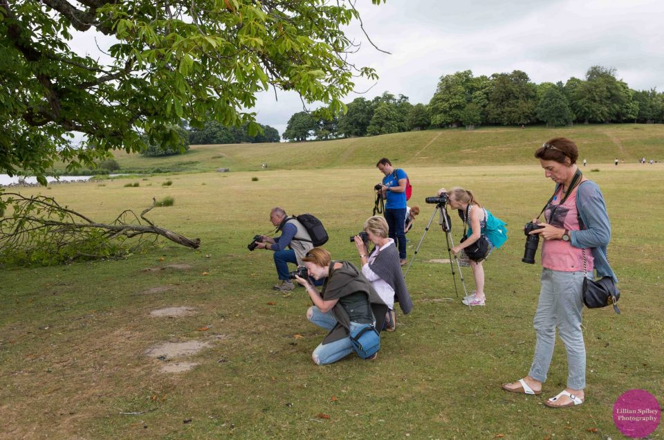 photography workshop west sussex