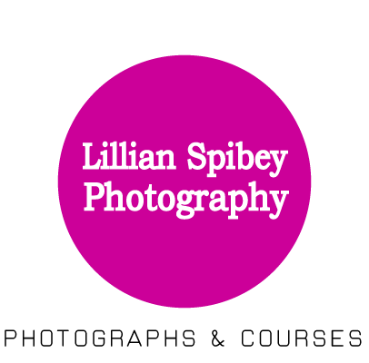 Lillian Spibey Photography