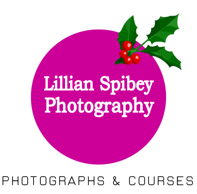 Lillian Spibey