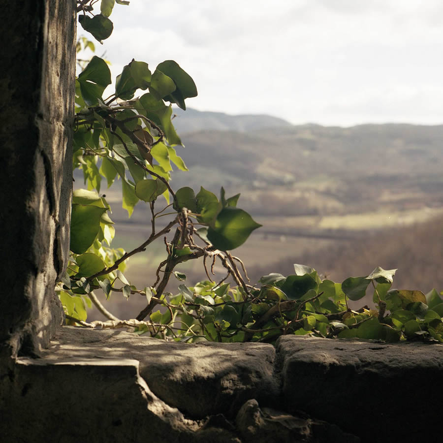 photography cortona